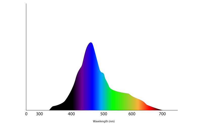 Light Spectrum for Coral Growth